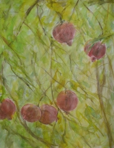 Pomegranates on the tree in the garden. watercolor and inks on paper.To sale