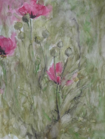 "View in the garden with pink poppies and grey green leaves. Watercolor and inks on paper (14""x19""). To sale"