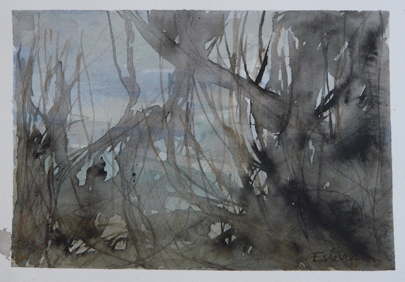 Branches of trees in the garden. watercolor , inks on paper
