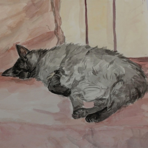 Sleeping cat on a pink sofa on the terrace.watercolor. not for sale