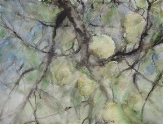 View in the apple tree with Golden apples, in the garden. watercolor and inks on paper.