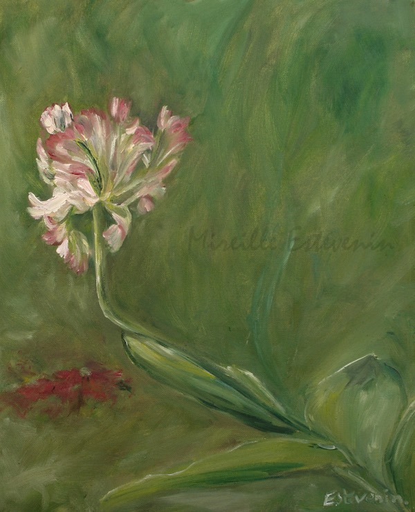 Parrot pink tulip in the garden.Green and pink. oil  painting on canvas. sold