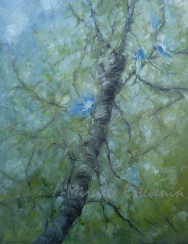 Blue morning glory on walnutt tree in the garden. oil on canvas