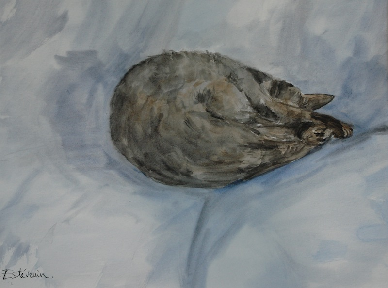 "Sleeping cat on a blue cushion.watercolor and ink on paper(16""x20"")"