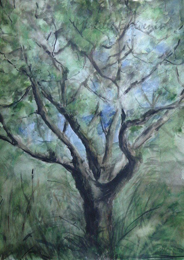 View of the apple tree in the garden. watercolor and  inks on paper.