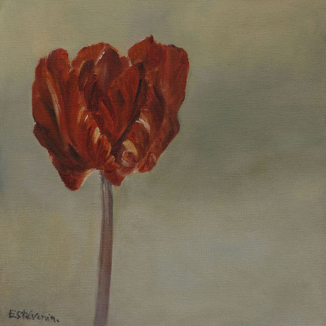 """A red ted tulip and a grey colored background. oil painting on cardboard(8""""x8"""").sold"""