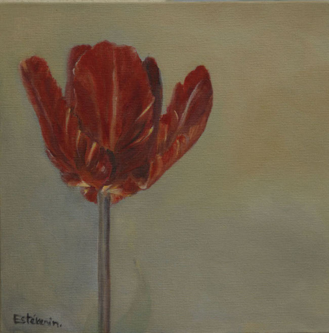 """A red tulip, 1 day later after the tulip.1. oil painting on cardboard(8""""x8"""").sold"""