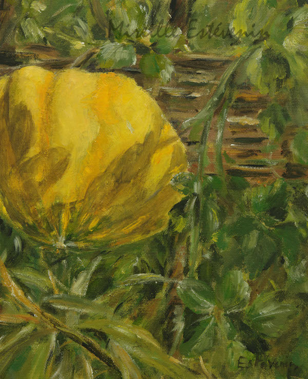 Yellow pumpkin in the garden. yellow and green colors. oil painting on cardboard.sold