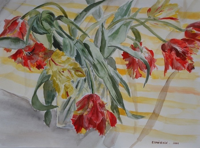 Still life of a bunch of parrot tulips (yellow and red) in a glass vas on a striped cloth (yellow and white). watercolor on paper.sold.