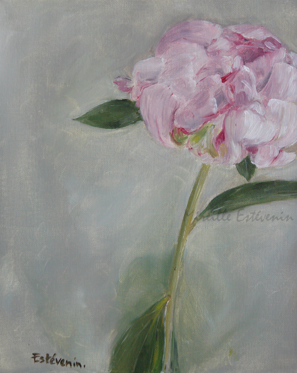 a pale rose peony on a green grey as background. oil painting on cardboard