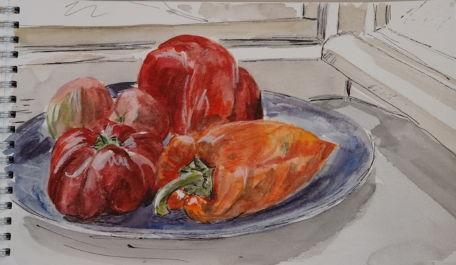Sketch of still life with  red and orange peppers. watercolor and ink in a sketchbook