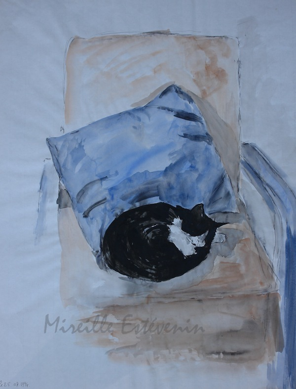 "Sketch of a black and white cat sleeping on a blue cushion,on an armchair. watercolor, China ink  on Ingres paper. 20""x25.5"""