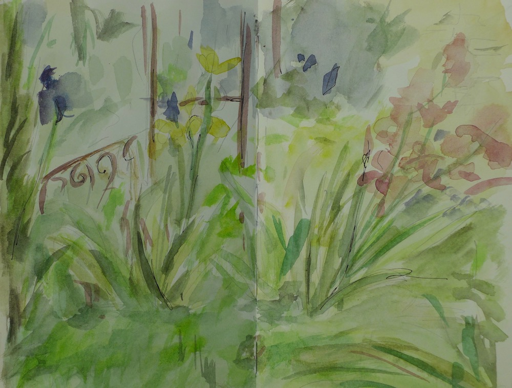 View of the garden with irises in May at Caromb. watercolor