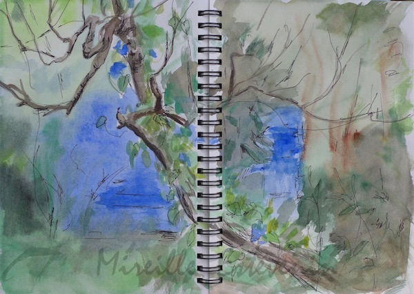 Sketch in the garden with an apple tree(dead) behind the small blue house. watercolor and black pen in a sketchbook.