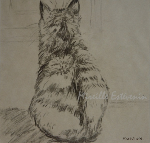 Sketch of a back cat looking by the window. charcoal on kraft paper