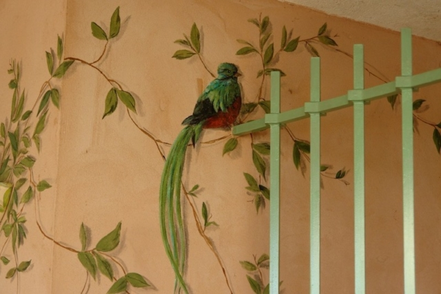 Detail of the quetzal painted on the wall of the Mexican mural. acrylic technic