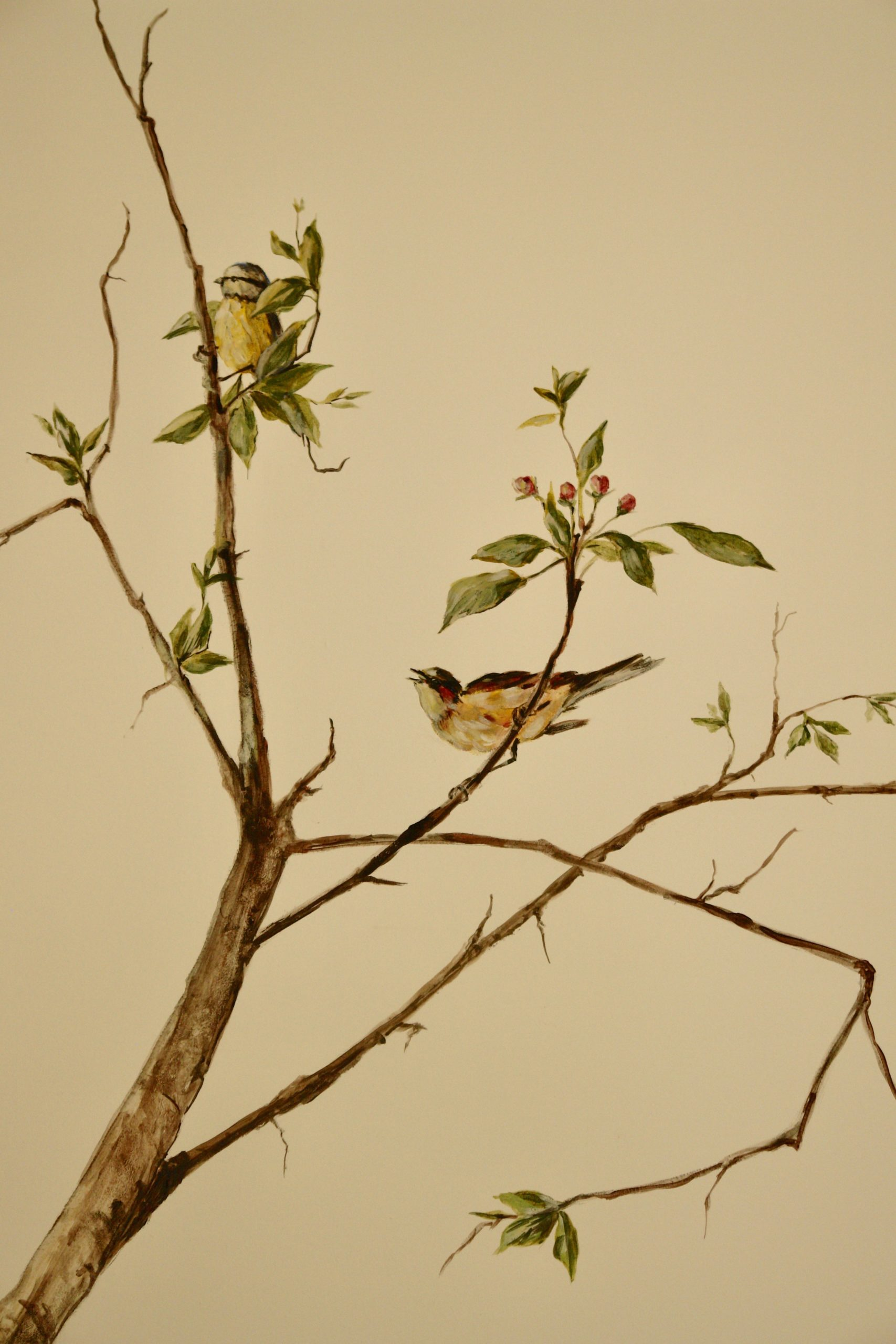 Birds on branches of apple tree in blossom painted on the wall of the bedroom