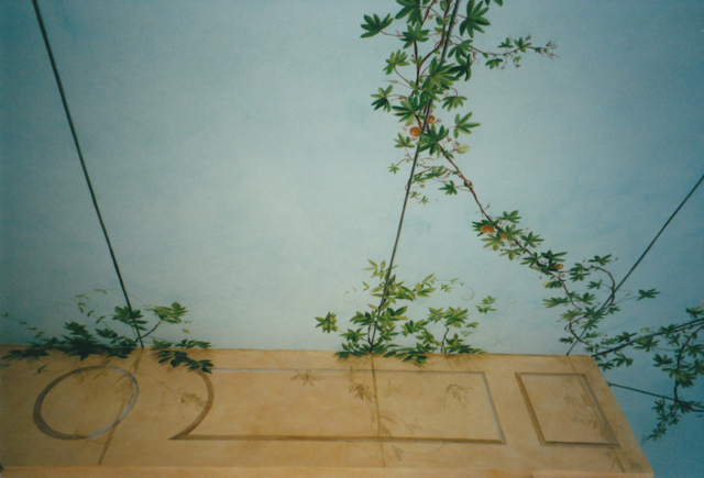 Fake sjy and vegetation painted on the ceiling and the walls of a veranda. mixed media