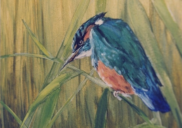 Detail of a king fisher painted on the wall of the hunting lodge with Camargue theme